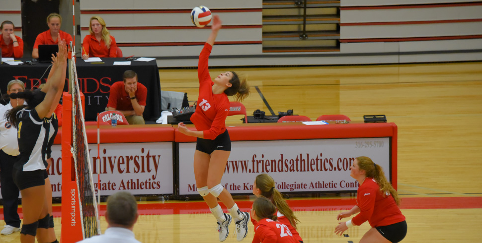 Photo for Volleyball Beats Sterling 3-1 on Career Days from Cossell and Swinicki